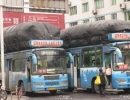 buses-with-cng-bags-2