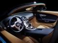 bugatti-veyron-meo-costantini-7