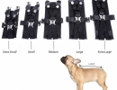 SEAT-BELT-FOR-DOGS (9)