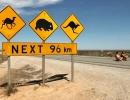 eyre-highway-145-km-3