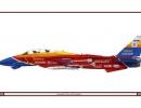 fighter-jet-racing-outfit-94-grumman-f-14a-tomcat-citroen