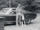 FORD-MUSTANG-BULLITT-1968-4