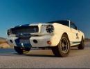 Shelby-GT350R-Prototype-1965-10