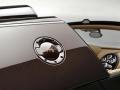 rembrandt-bugatti-veyron-grand-sport-vitesse-08
