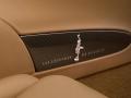 rembrandt-bugatti-veyron-grand-sport-vitesse-10