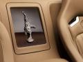 rembrandt-bugatti-veyron-grand-sport-vitesse-11