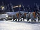 mercedes-santa-sleigh-2