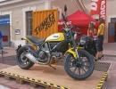 scooter-moto-festival-2015-04