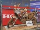scooter-moto-festival-2015-13