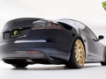 t-sportline-model-s-gold-edition-3