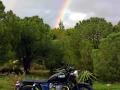 triumph-bonneville-t100-black-my2014-03