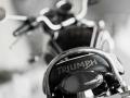 triumph-bonneville-t100-black-my2014-09