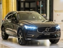 new-volvo-xc60-golden-hall_pine-grey_1