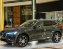 new-volvo-xc60-golden-hall_pine-grey_2