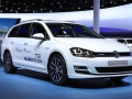 vw-golf-tgi-2