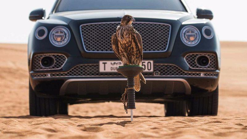 bentley-bentayga-falconry-mulliner (7)