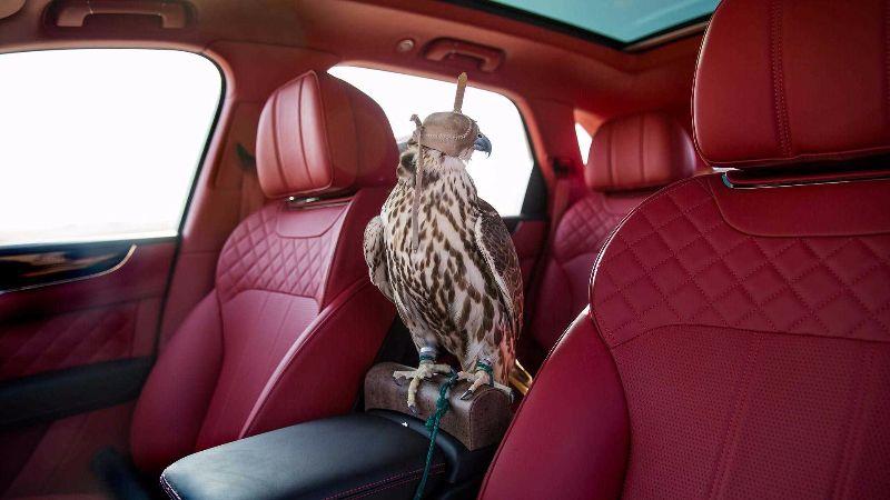 bentley-bentayga-falconry-mulliner
